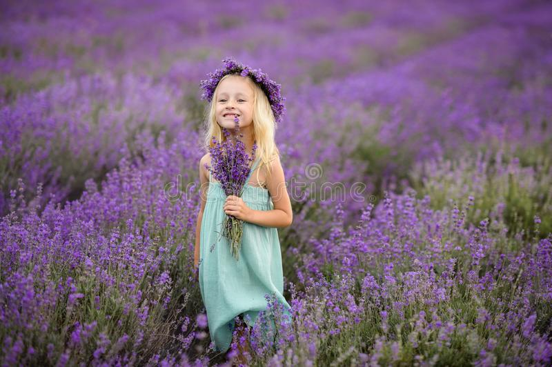 Beautiful girl on the lavender field royalty free stock photo