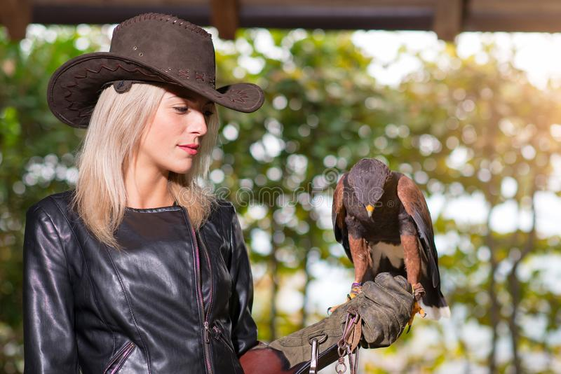 Beautiful blond woman holding an harris hawkon a protective glov royalty free stock images