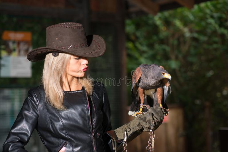 Beautiful blond woman holding an harris hawkon a protective glove stock photography