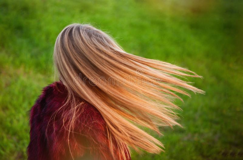 Beautiful blonde hair of a young girl royalty free stock image