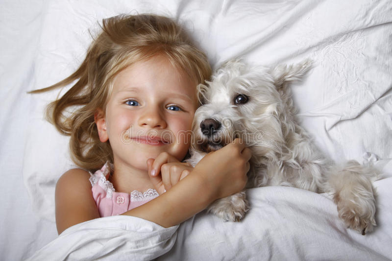Beautiful blonde little girl laughing and lying with white schnauzer puppy dog on white bed. Friendship concept. royalty free stock photo