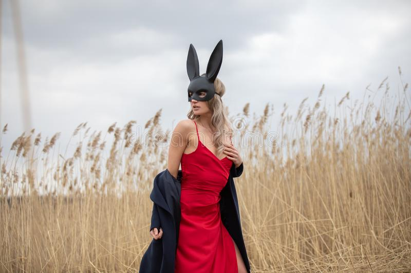 Beautiful blonde woman in black animal mask. Red sexy dress and black autumn coat. Field with high autumn grass stock photography