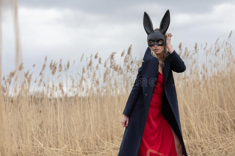 Beautiful blonde woman in black animal mask. Red sexy dress and black autumn coat. Field with high autumn grass royalty free stock images
