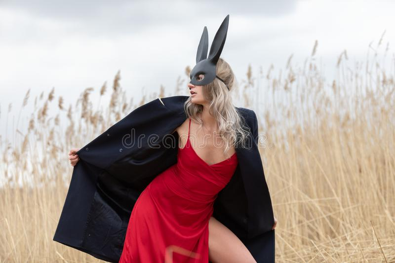 Beautiful blonde woman in black animal mask. Red sexy dress and black autumn coat. Field with high autumn grass royalty free stock photography