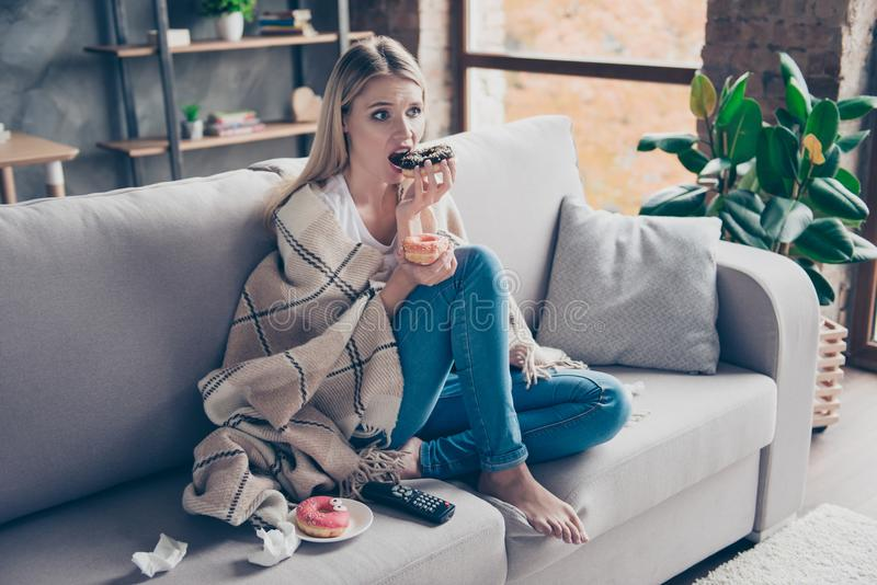 Beautiful blonde woman sitting on couch in living room under blanket eating chokolate donat watching something exciting. Interesting on television having health royalty free stock photography