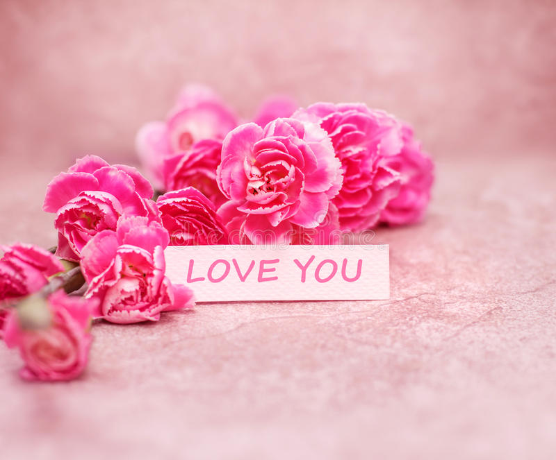 Beautiful blooming carnation flowers with Love you wording on white card paper. The beautiful blooming carnation flowers with Love you wording on white card royalty free stock photos