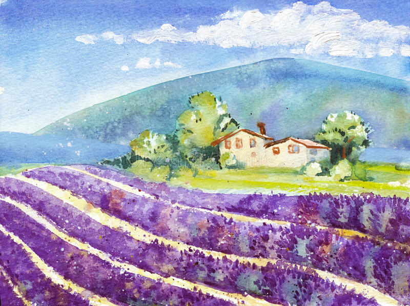 Beautiful blooming lavender fields with house in distance royalty free illustration