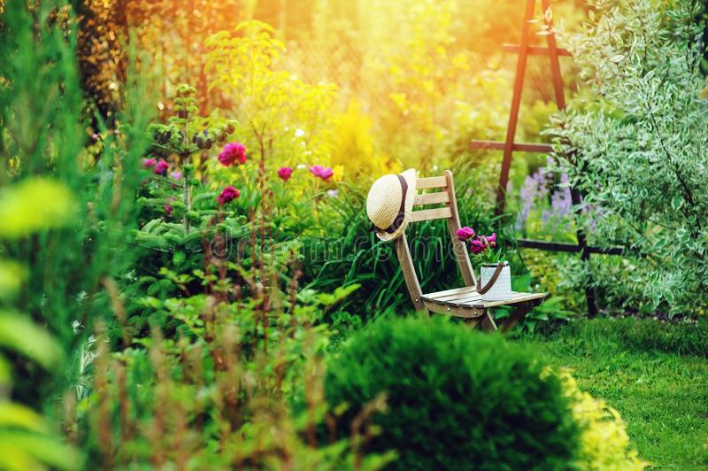 Beautiful blooming summer private garden with wooden chair. Gardener hat and watering can royalty free stock photography