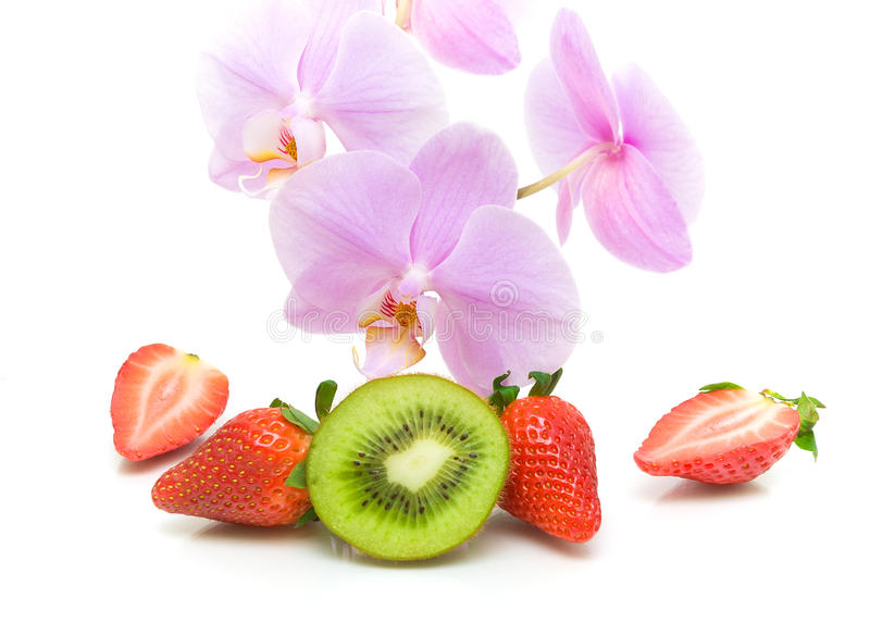orchid blossoms and fruit on a white background. horizontal photo. royalty free stock image