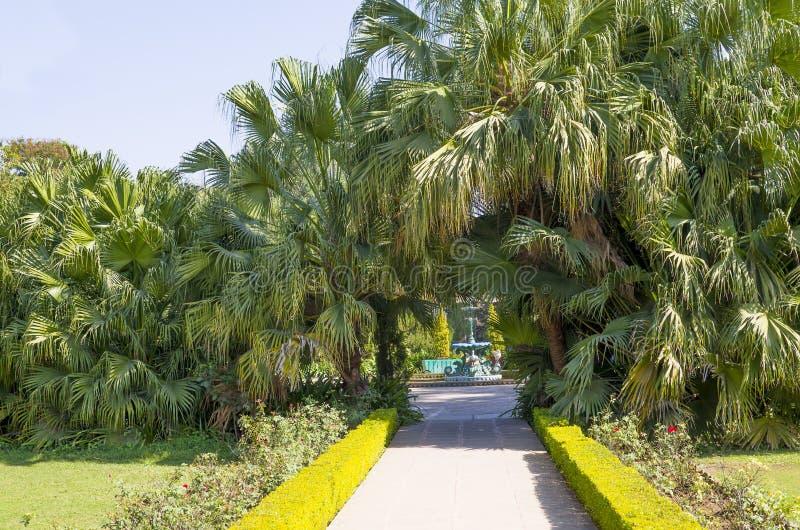 Download Beautiful Blossoming Garden In Udaipur Sahelion Ki Bari Stock  Image   Image Of Flowers,