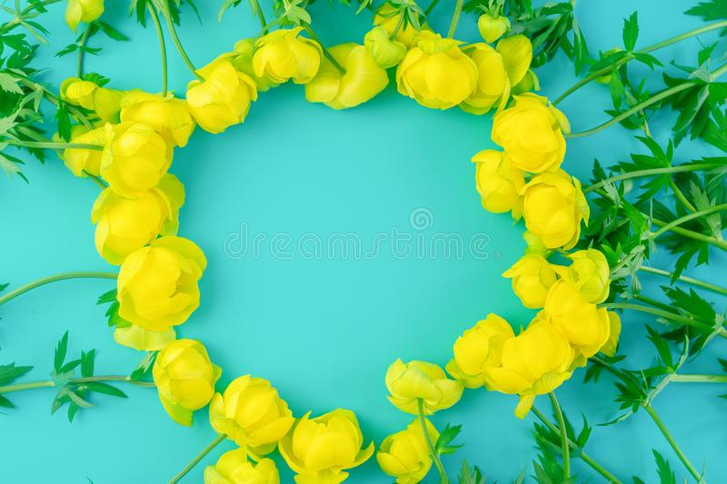 Beautiful blue background with yellow buttercup flowers with copy space.  stock images