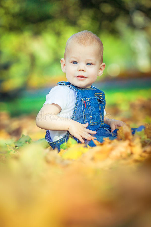 beautiful blue-eyed child in the fall on a carpet of yellow red leaves stock images