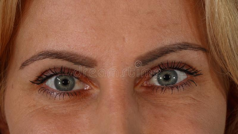 Beautiful blue eyes of a mature woman looking to the camera stock images