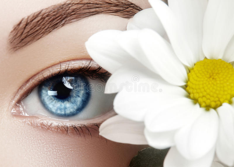 Beautiful blue female eye with white spring flower. Clean skin, fashion naturel make-up. Good vision, healthcare. Close-up macro of beautiful female eye with stock photo