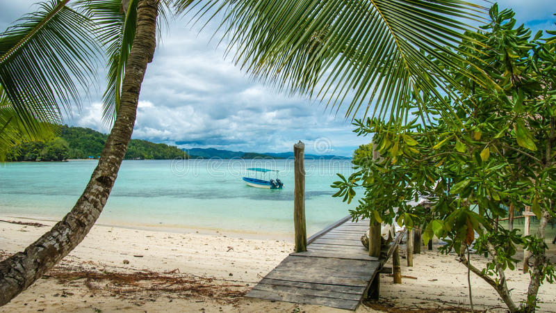 Beautiful Blue Lagoone with a Palmtree in Front, Gam Island, West Papuan, Raja Ampat, Indonesia stock image