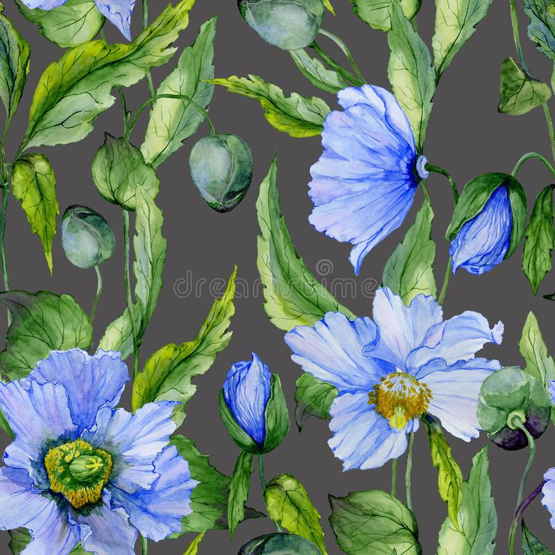 Beautiful blue poppy flowers with green leaves on dark gray background. Seamless floral pattern. Watercolor painting. Hand painted illustration. Fabric vector illustration