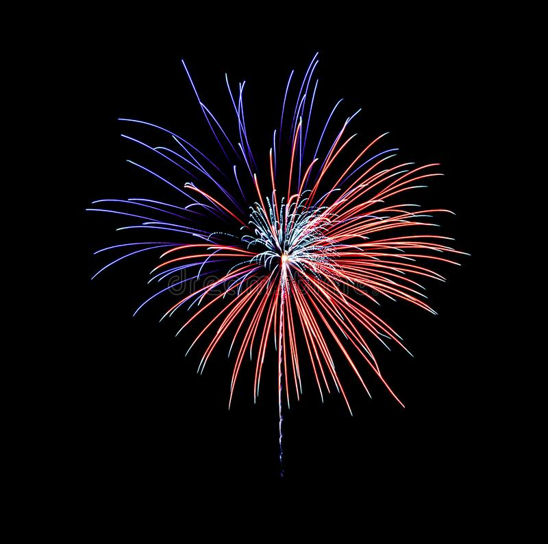 Beautiful blue and red fireworks exploding in the night sky, isolated on black background royalty free stock photos