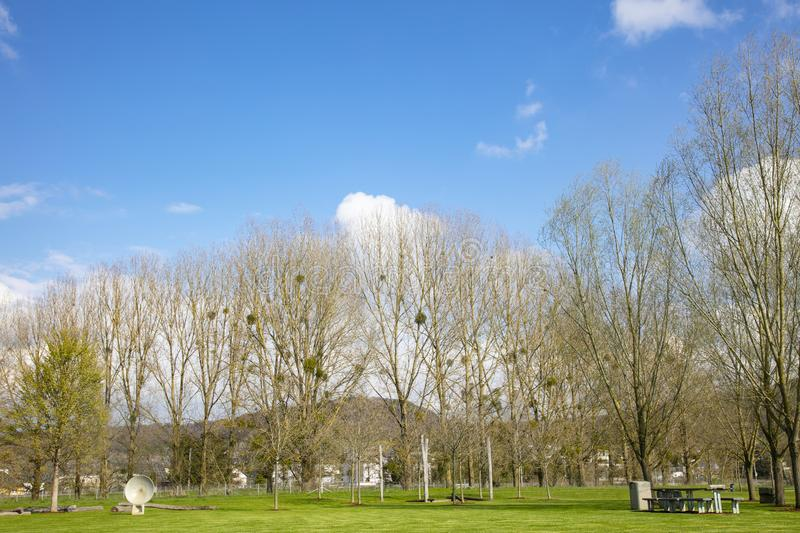 Beautiful blue sky above the trees royalty free stock photo