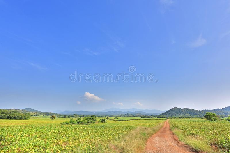 Beautiful blue sky and country road to the mountain. Rural green field and trees royalty free stock photos