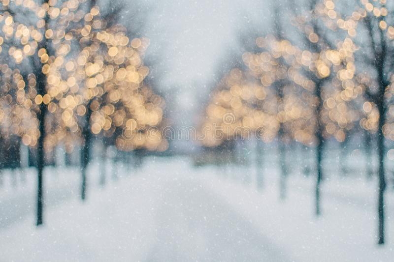 Blurred winter tree alley with falling snow and shining christmas lights bokeh stock photos
