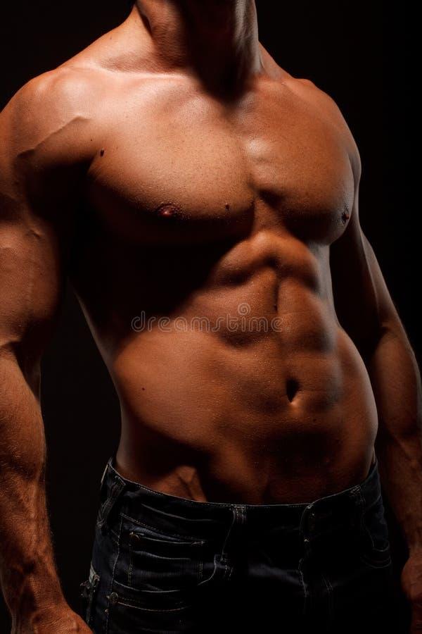 Free Beautiful Body Stock Photography - 9530822