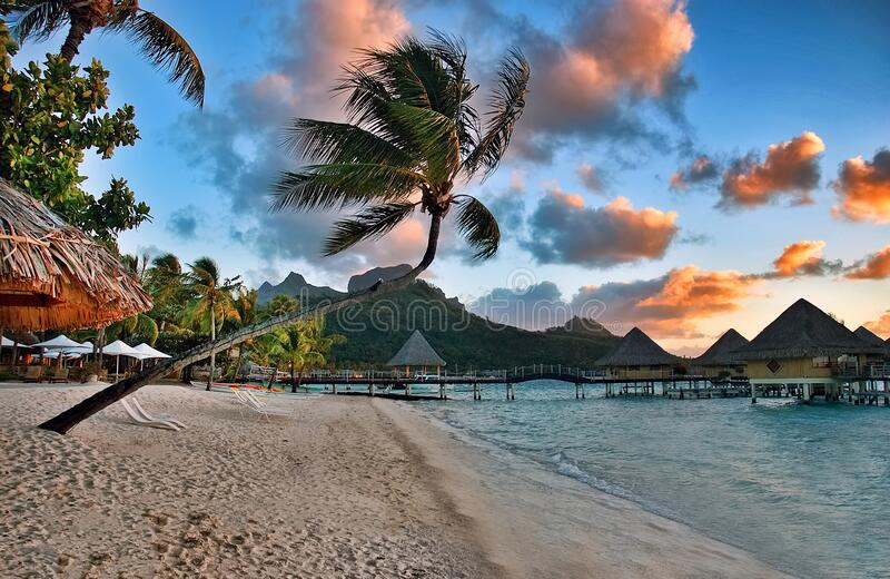 Beautiful Bora Bora sunrise sunset on the beach. Beautiful Bora Bora sunset sunrise on Matira beach, with bent palm tree, serene ocean waters and over the water stock photo