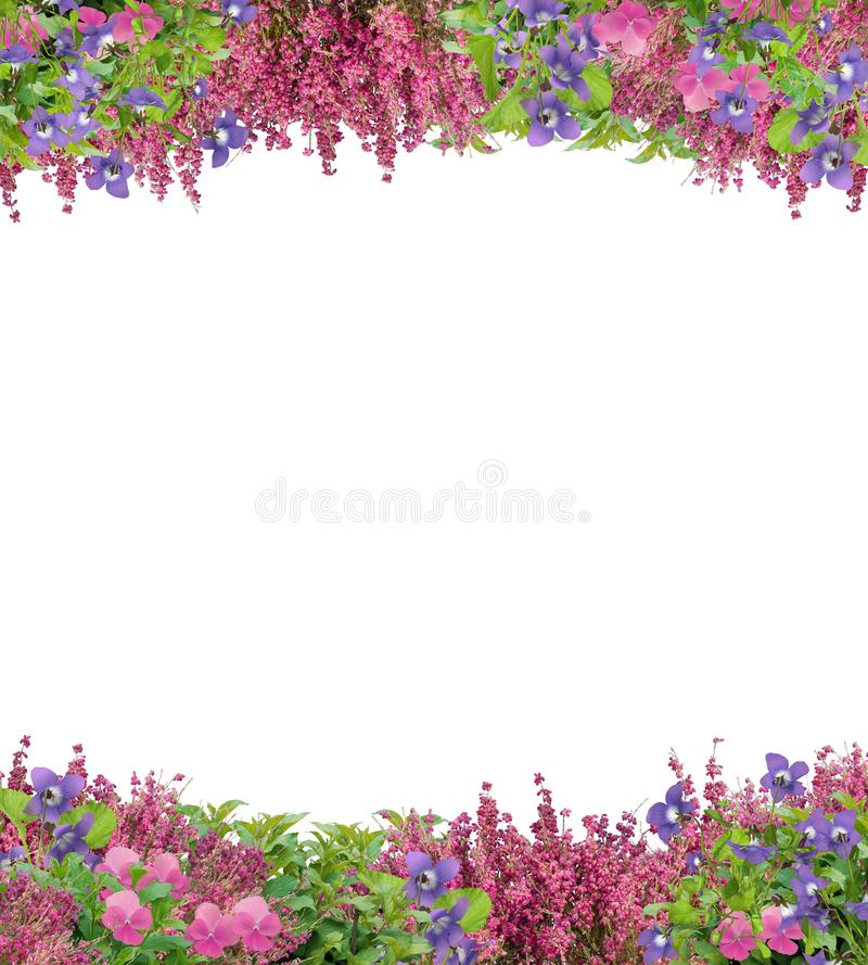 Beautiful Border of Spring Flowers stock image