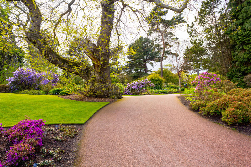 Beautiful, botanic garden in Spring. Beautiful, botanic garden in Springtime stock images