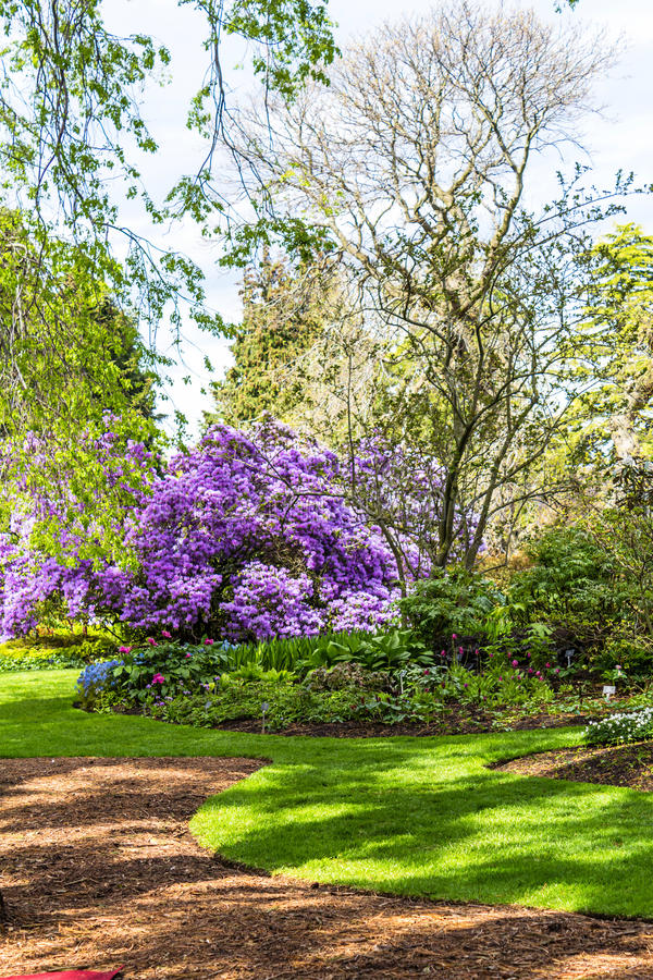 Beautiful, botanic garden in Spring. Beautiful, botanic garden in Springtime royalty free stock images
