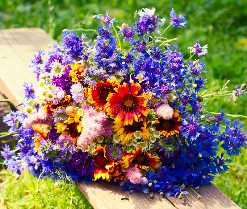 Beautiful bouquet of bright wildflowers royalty free stock images