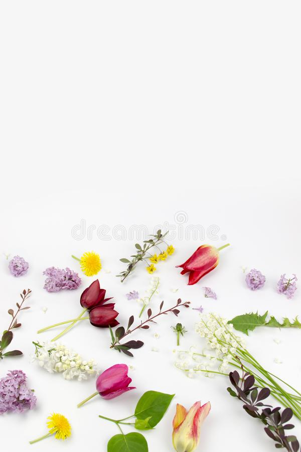Beautiful bouquet of flowers in vase isolated stock images