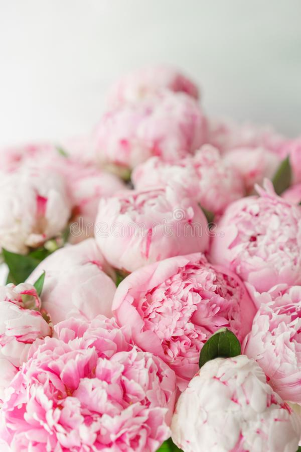Beautiful bouquet of pink peonies . Floral composition, daylight. Wallpaper. Lovely flowers in glass vase. Lovely flowers in glass vase. Beautiful bouquet of stock photography
