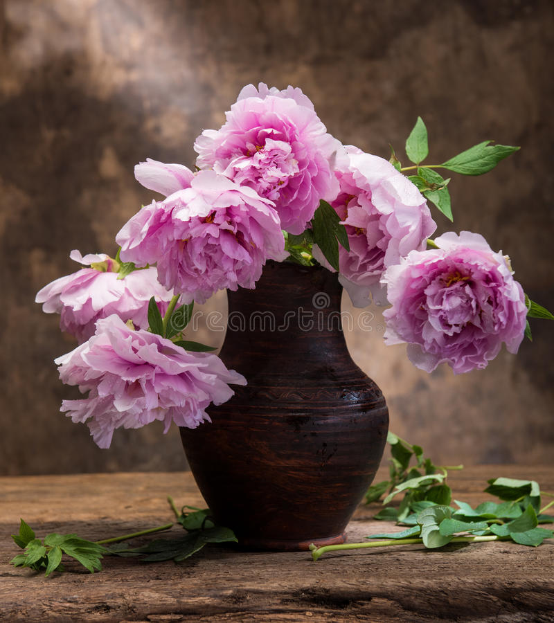 Beautiful bouquet of pink peonies stock images