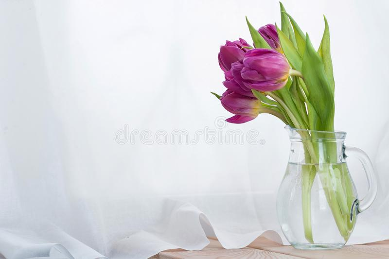 Beautiful bouquet of pink tulips flowers in a glass jug on white background. Place for text. Spring. holidays. Beautiful bouquet of pink colors of tulips in a stock photography