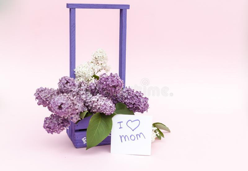 Beautiful bouquet of purple lilac and card on purple paper background stock images
