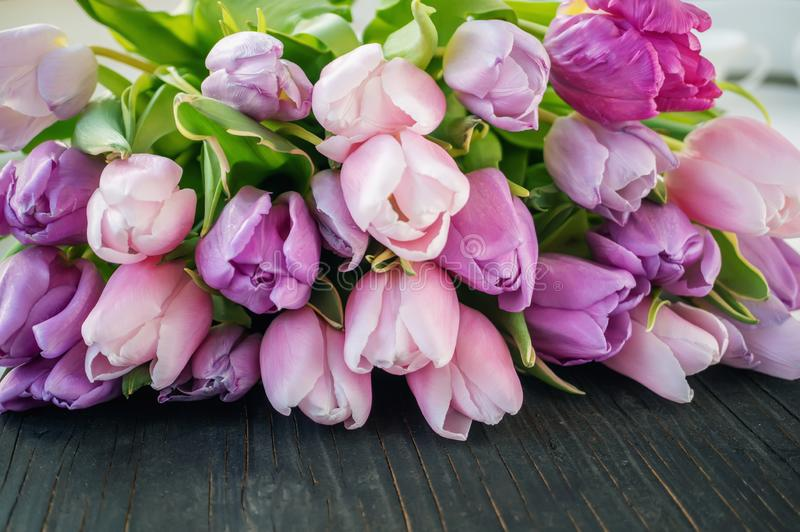 A beautiful bouquet of purple and pink tulips lies on a black wooden background. Copy space. Congratulation. Spring postcard royalty free stock photography