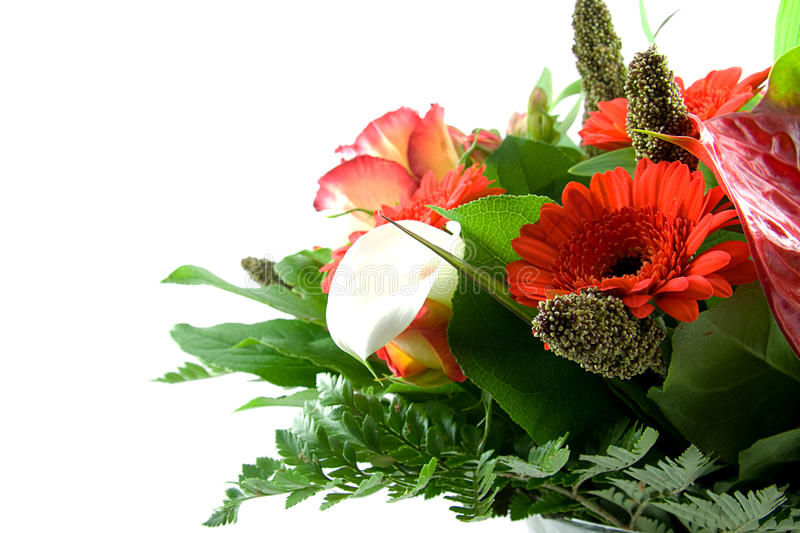 Download Beautiful Bouquet Of Red Flowers Stock Photo - Image: 11286722