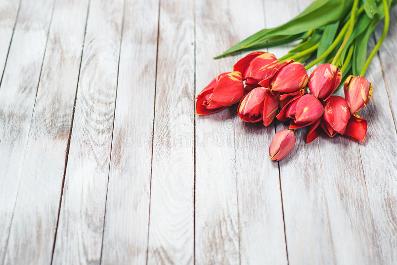 Beautiful bouquet of red tulips on wooden background. Space for text. Selective focus. stock image