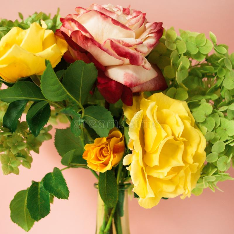 Beautiful bouquet of red and yellow roses, green hydrangea in front of pale pink pastel background. Floral lifestyle composition. Beautiful bouquet of red and stock photography