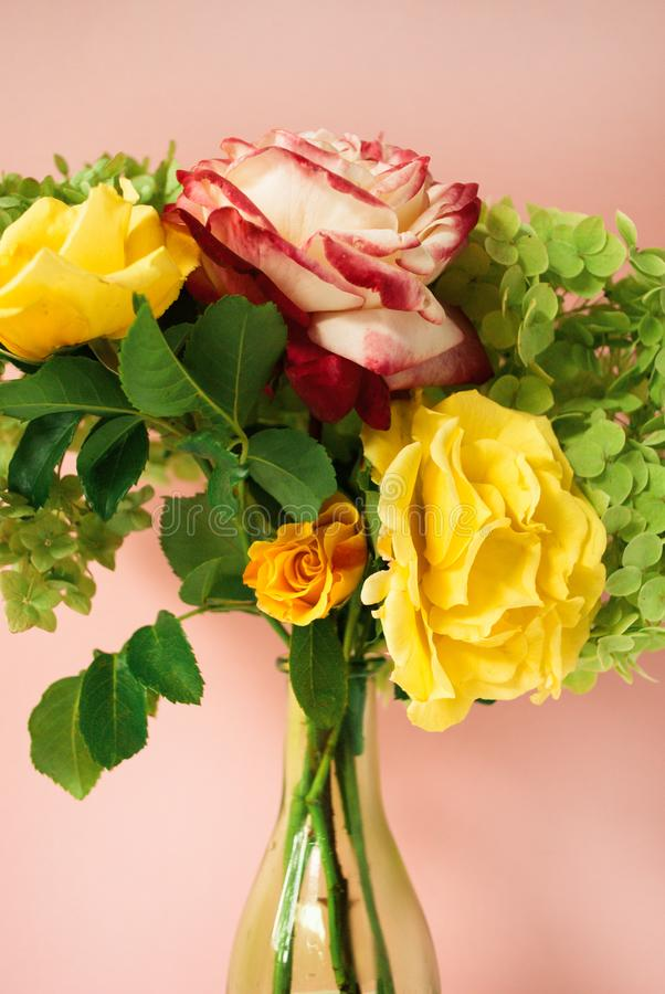 Beautiful bouquet of red and yellow roses, green hydrangea in front of pale pink pastel background. Floral lifestyle composition. Beautiful bouquet of red and royalty free stock photos