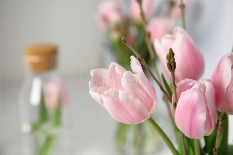 Beautiful bouquet with spring pink tulips on blurred background, closeup. Space for text stock photo