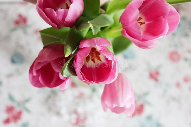 Beautiful bouquet of tulips. Glass vase. Pink tulips. Postcard. royalty free stock photography