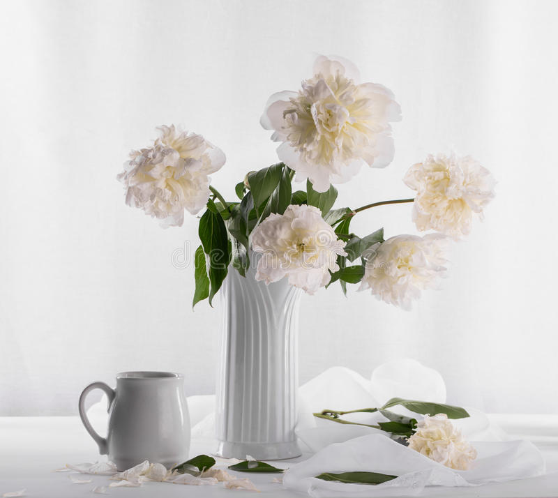 Beautiful bouquet of white peonies stock photos
