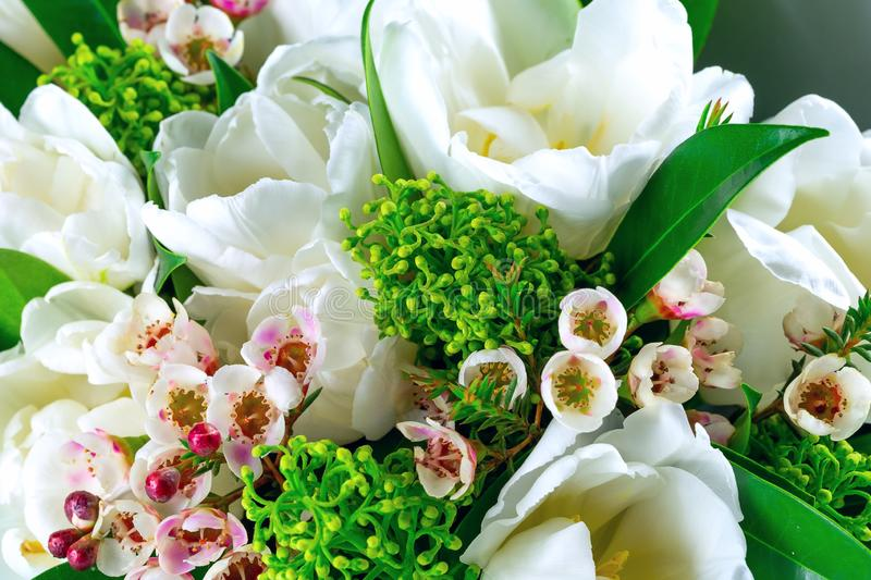 Beautiful bouquet of white tulips with green leaves and other decorative flowers close up. Beautiful bouquet of white tulips with green leaves and other stock photography