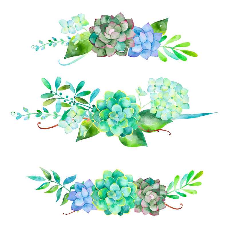 3 beautiful bouquet for your design with hydrangea , leaves, berries and succulents plants royalty free illustration