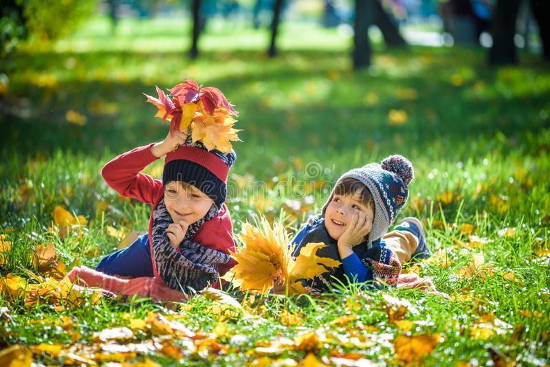 Beautiful boy, little child laying with a lot of yellow autumn l stock images