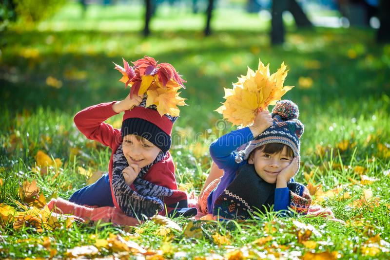 Beautiful boy, little child laying with a lot of yellow autumn leaves in park. Kid boy having fun on sunny warm october day. royalty free stock photos