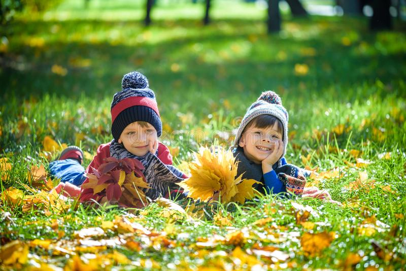Beautiful boy, little child laying with a lot of yellow autumn leaves in park. Kid boy having fun on sunny warm october day. stock image