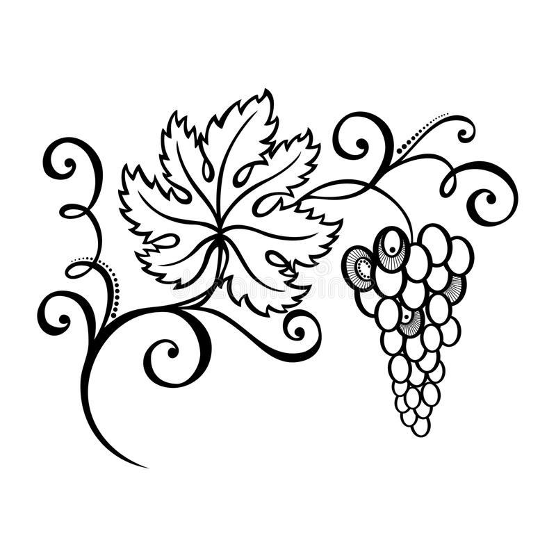 Download Beautiful Branch of Grapes stock vector. Illustration of pattern - 34606667