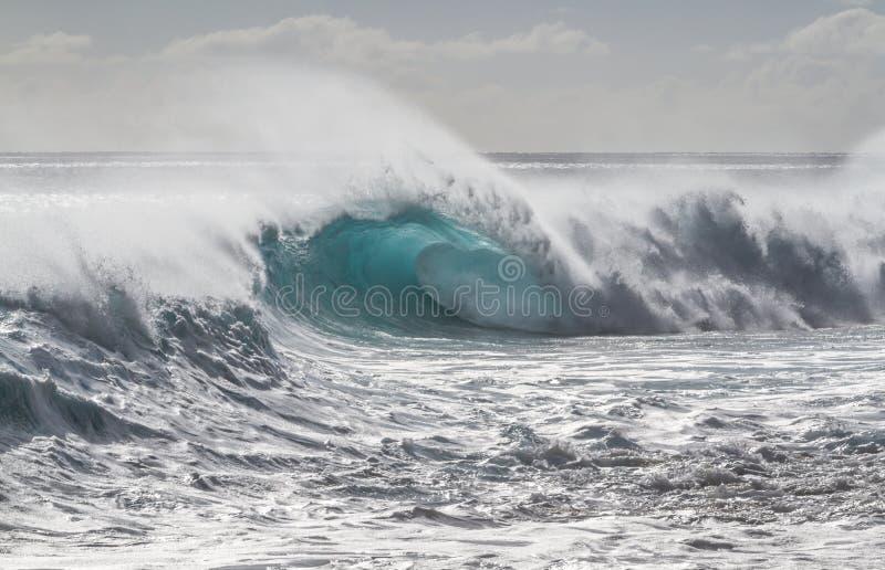 Beautiful breaking Ocean wave in Hawaii royalty free stock photos